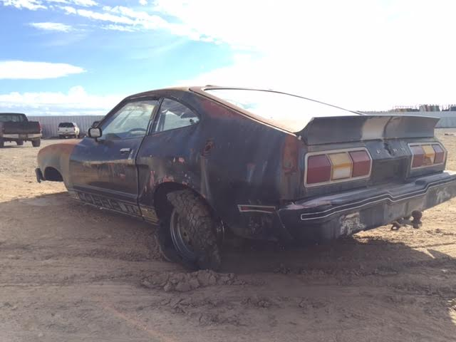 ford mustang ii cobra dr hatchback fod desert valley auto parts