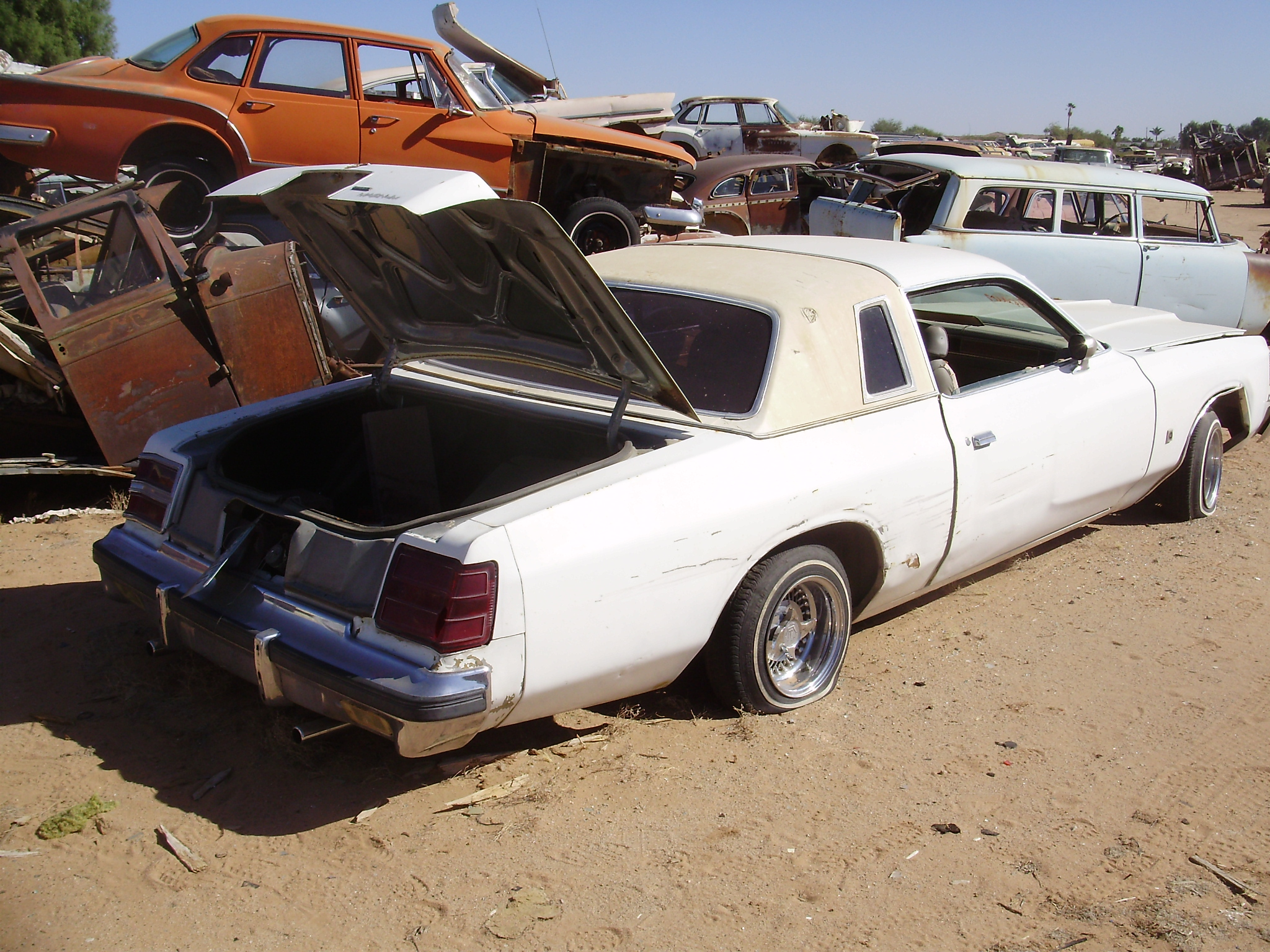 1979 Dodge Magnum 79do1655c Desert Valley Auto Parts